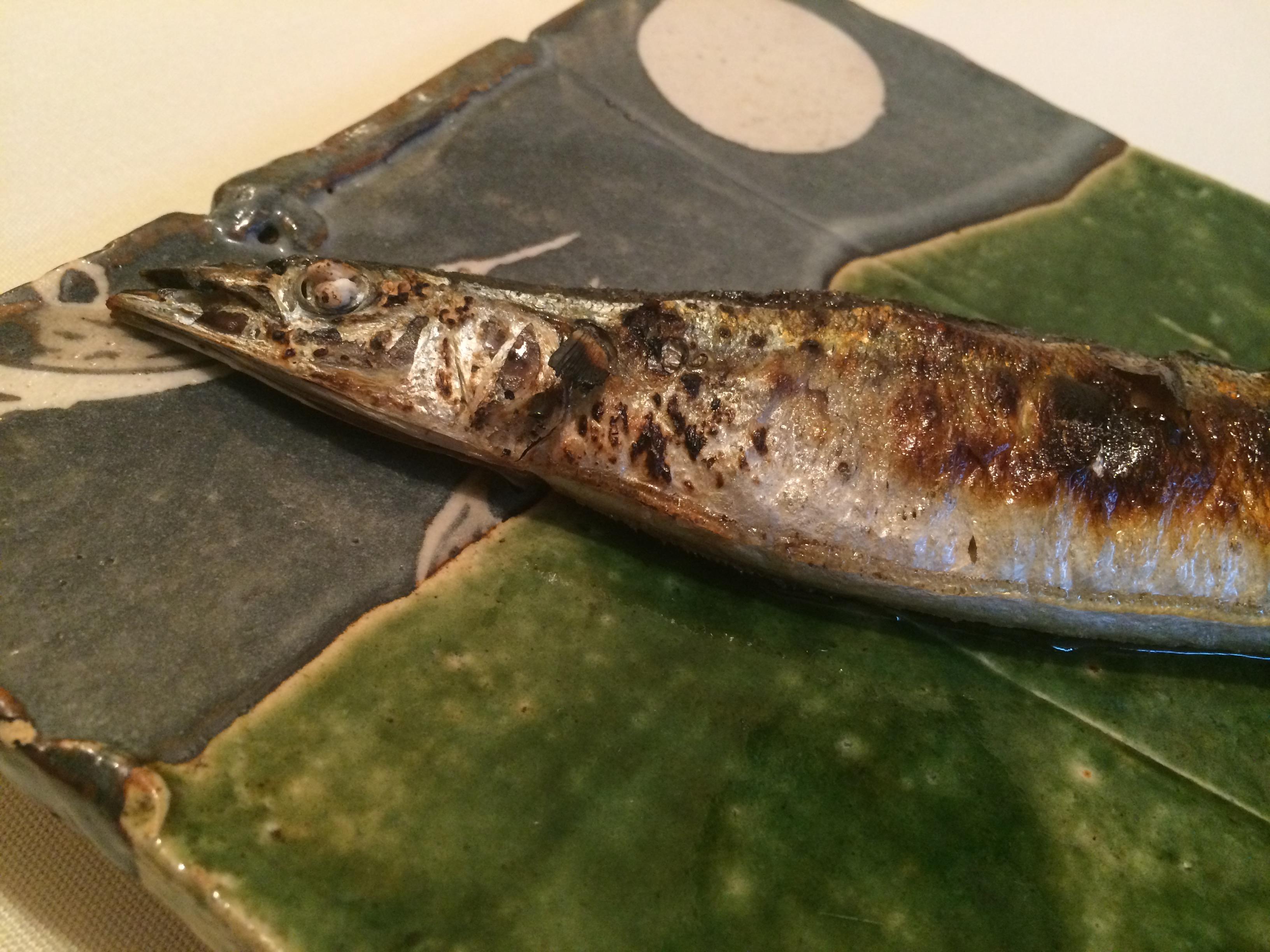 2016秋刀魚